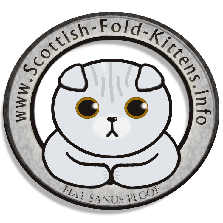 scottish-fold-kittens.info_logo