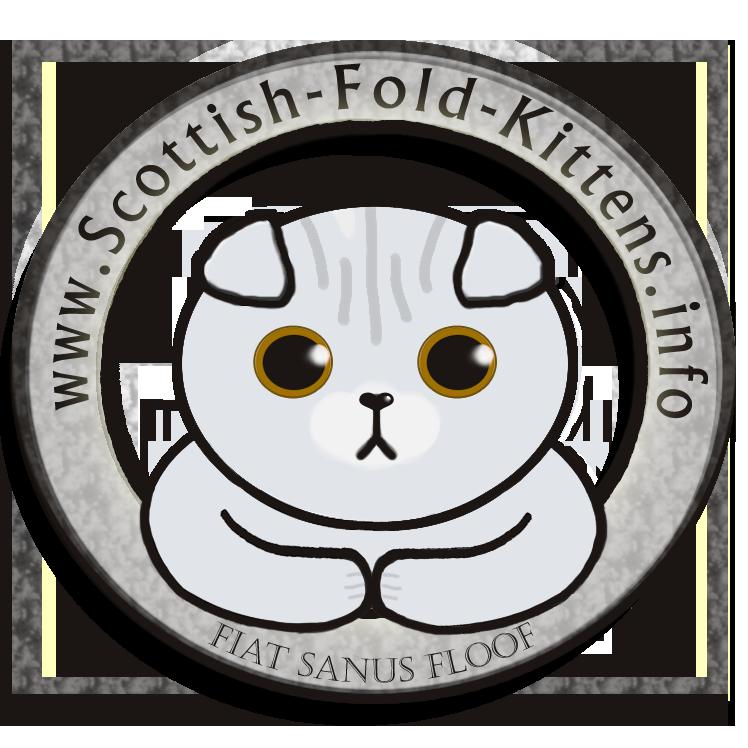 scottish-fold-kittens.info_logo